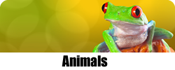 animals.png